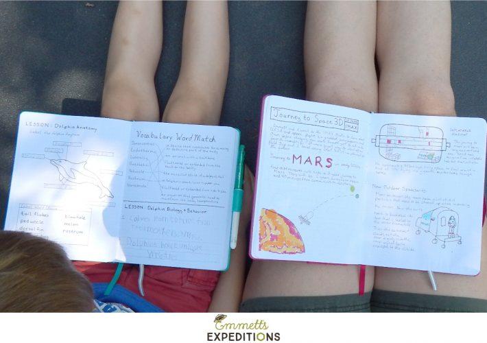 hot to use homeschool dot journals