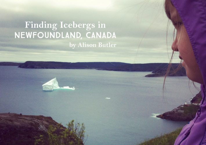 Finding Icebergs in Newfoundland